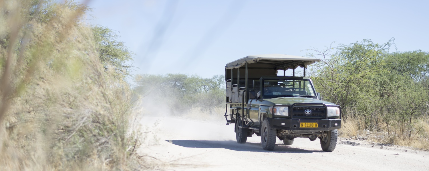 Activities - Mokuti Etosha Lodge